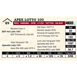 Apex Lotto 100
