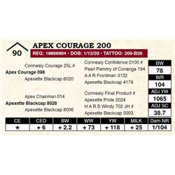 Apex Courage 200