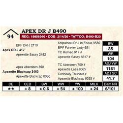Apex DR J B490