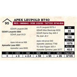 Apex Leupold B740