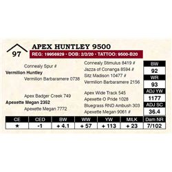 Apex Huntley 9500