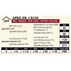 Apex DR J B150