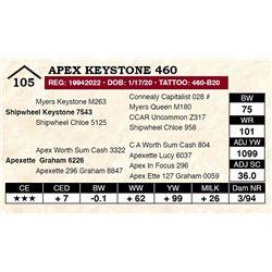 Apex Keystone 460