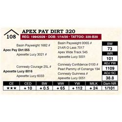 Apex Pay Dirt 320