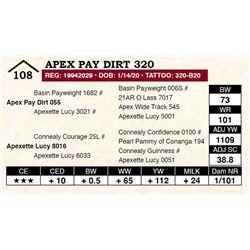 Apex Pay Dirt 320