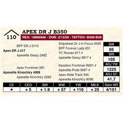 Apex DR J B350
