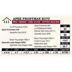 Apex Frontman B370