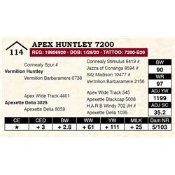 Apex Huntley 7200