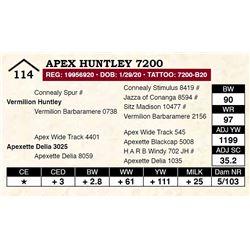 Apex Huntley 7200