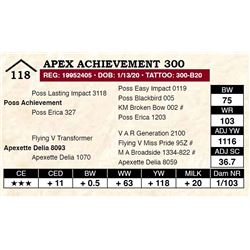 Apex Achievement 300
