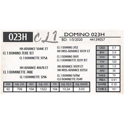 CL 1 DOMINO 023H