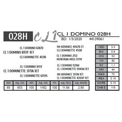 CL 1 DOMINO 028H