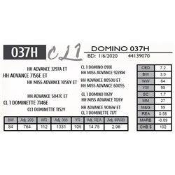 CL 1 DOMINO 037H