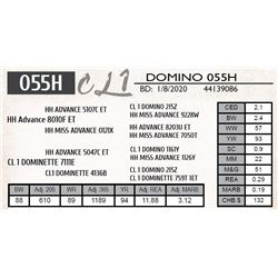 CL 1 DOMINO 055H