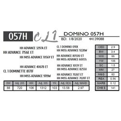 CL 1 DOMINO 057H