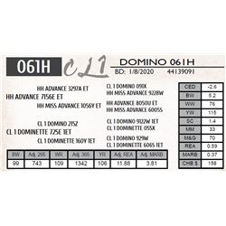 CL 1 DOMINO 061H
