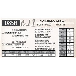 CL 1 DOMINO 085H