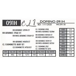 CL 1 DOMINO 091H