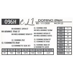 CL 1 DOMINO 096H