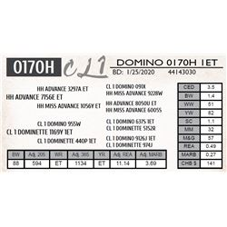 CL 1 DOMINO 0170H 1ET