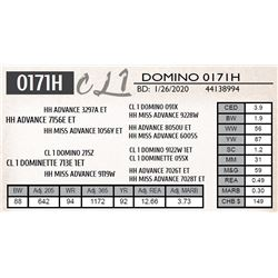 CL 1 DOMINO 0171H