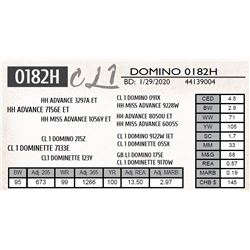 CL 1 DOMINO 0182H