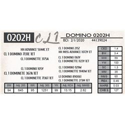 CL 1 DOMINO 0202H