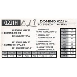 CL 1 DOMINO 0221H