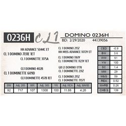 CL 1 DOMINO 0236H
