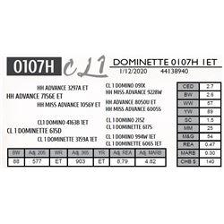 DOMINETTE 0107H 1ET