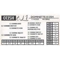 DOMINETTE 0135H