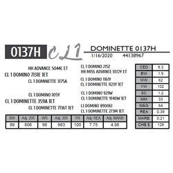 DOMINETTE  0137H