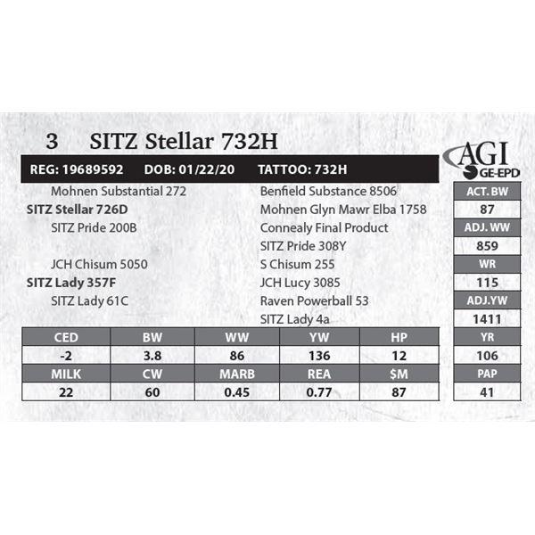 SITZ Stellar 732H