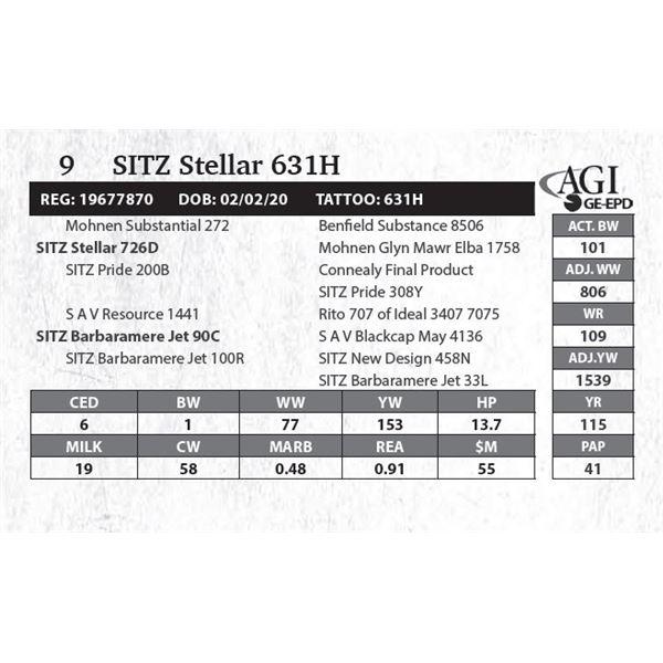 SITZ Stellar 631H