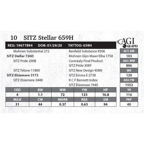 Sitz Stellar 659H