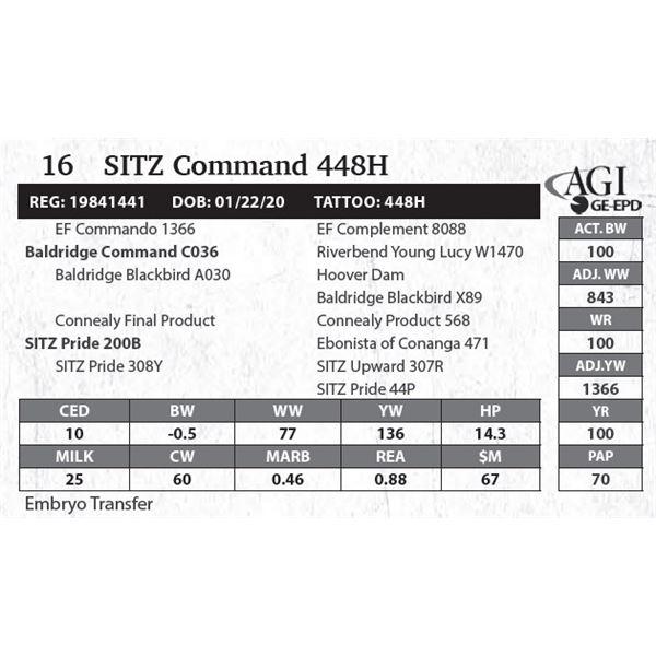 SITZ Command 448H