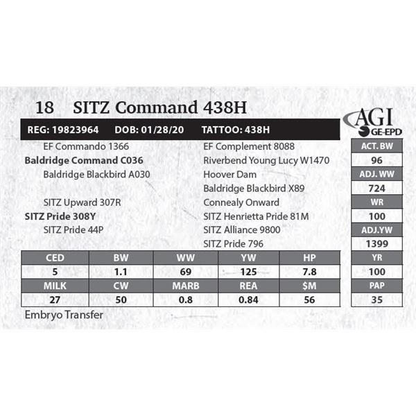 SITZ Command 438H