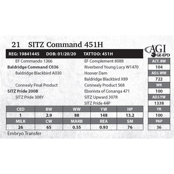SITZ Command 451H