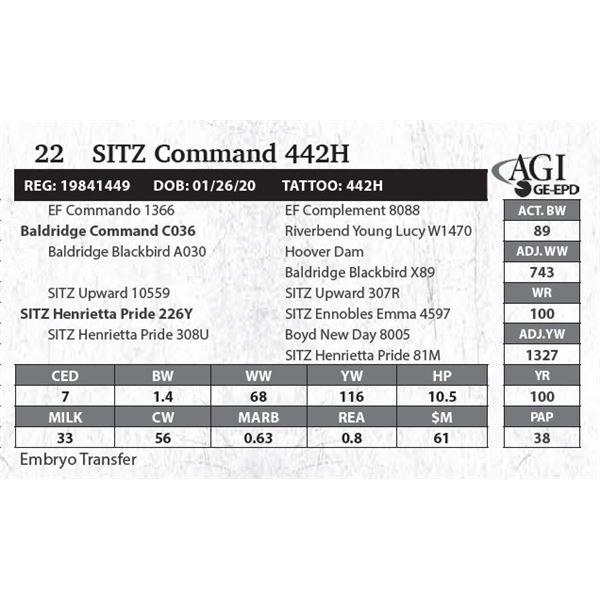 SITZ Command 442H