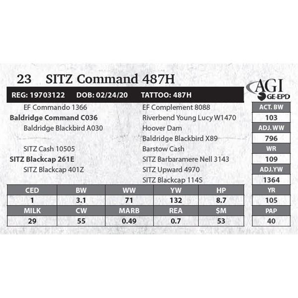 SITZ Command 487H