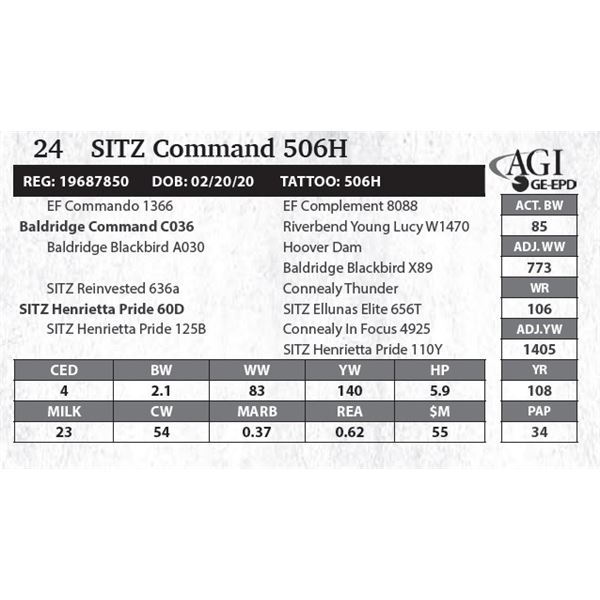 SITZ Command 506H
