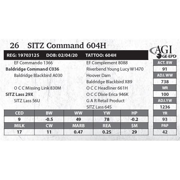Sitz Command 604H