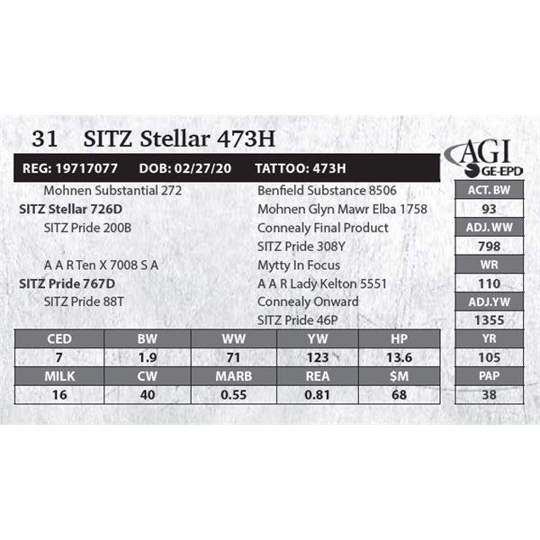 Sitz Stellar 473H