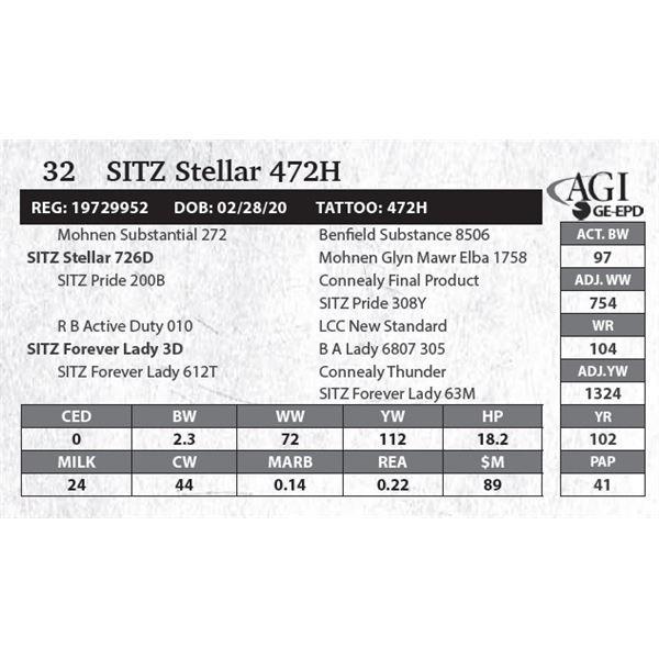 Sitz Stellar 472H