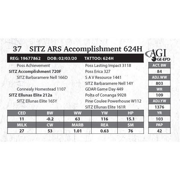 SITZ ARS Accomplishment 624H