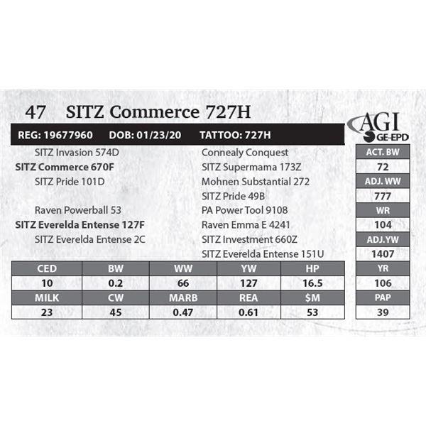 SITZ Commerce 727H