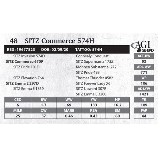 SITZ Commerce 574H