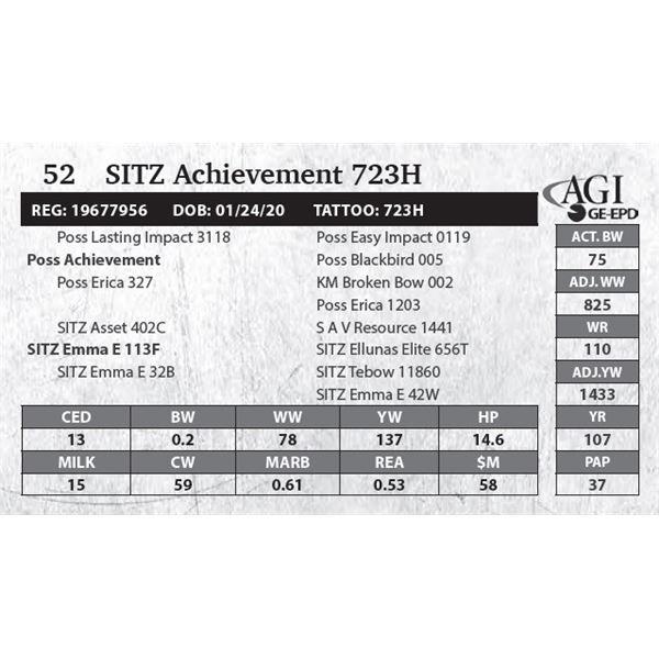 SITZ Achievement 723H
