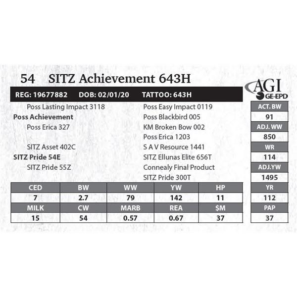 SITZ Achievement 643H