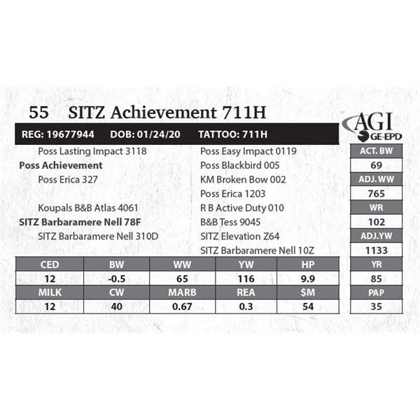 SITZ Achievement 711H
